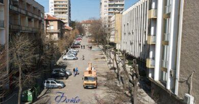 Санитарната сеч в центъра на Хасково продължава и днес